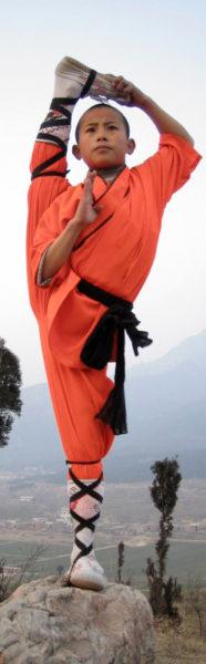 Происхождение йоги Кришнамачарьи от традиционных тибетских практик выглядит правдоподобно.